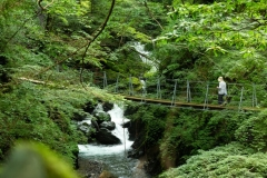 安部大滝までお散歩はいかがですか?往復1時間程度です。