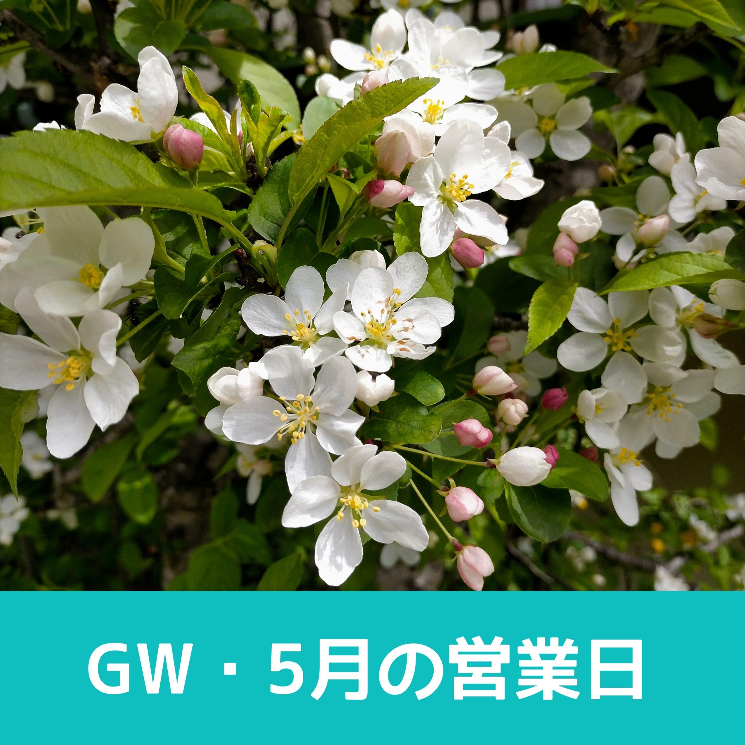 梅ヶ島温泉 湯の華 2021年5月の営業日