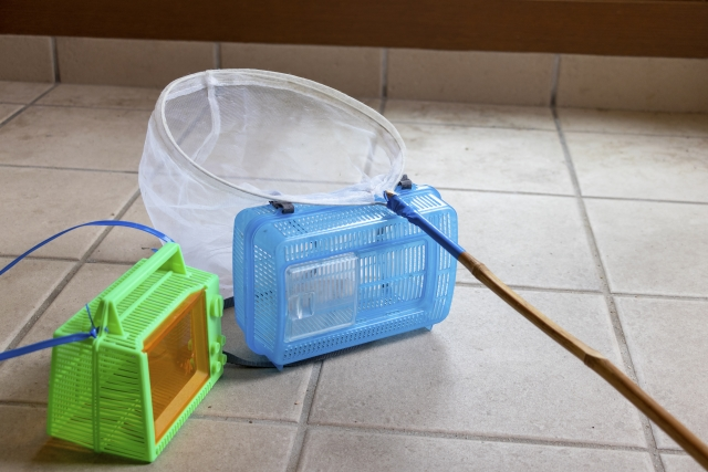 虫捕り網と虫かご